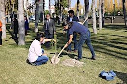 11 Milyon Ağaç; Bugün Fidan, Yarın Nefes Kampanyası...