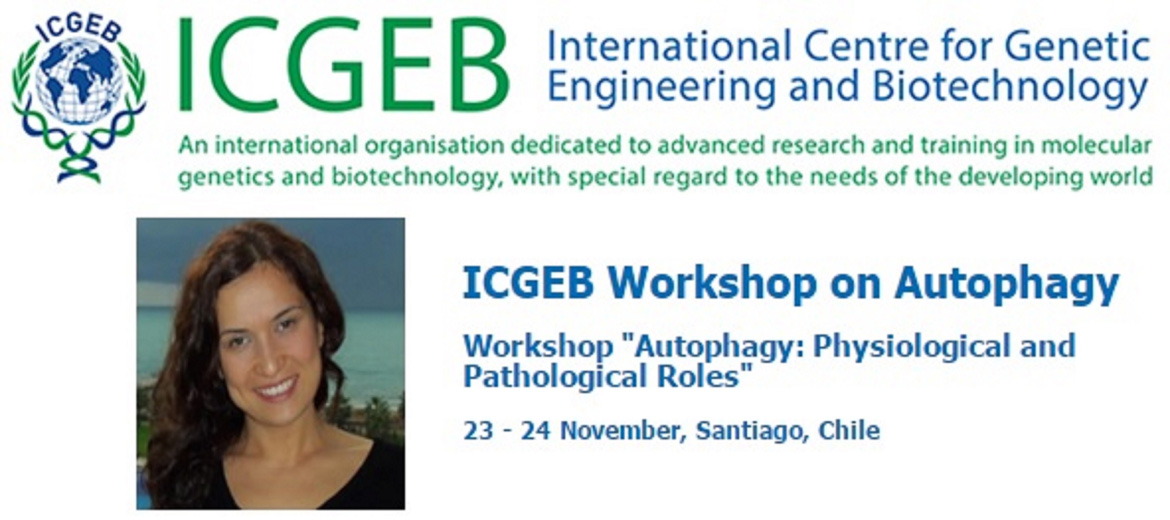 the role of the international centre for genetic engineering and biotechnology in the implementation • the role of agricultural biotechnology policies in thailand's v s chauhan director, international centre for genetic engineering and biotechnology (icgeb).